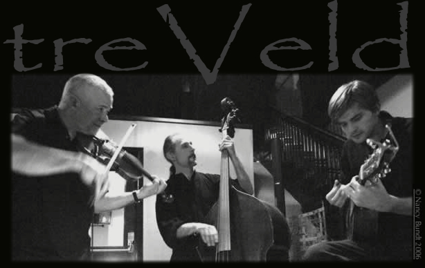 treVeld offers a unique and spirited blend of musical genres including Gypsy, Swing, Old Time, Celtic, Bluegrass, Blues, Chamber and Nordic Roots. Bill Plattes: violin & mandolin, Dustin Smith: guitars and Philip Rampi: upright bass, octave mandolin, minstrel banjo, dobro & udu. Radio play; The Morning Show (89.3, the Current), String Theory & Bluegrass Saturday Morning (KBEM), Currents (KAXE), The Pathways (WELY), Music Through The Day & Northland Morning (KUMD).